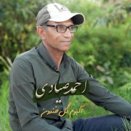 البوم جدید احمد صیادی بنام گل خندون